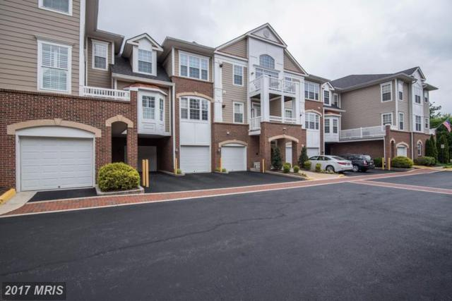 7870 Rolling Woods Court 3M2, Springfield, VA 22152 (#FX9956448) :: Robyn Burdett Real Estate Group