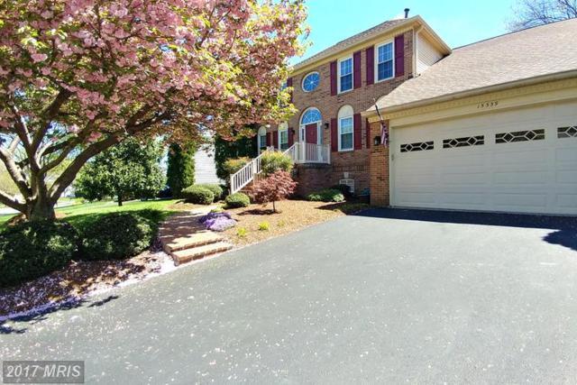15339 Jordans Journey Drive, Centreville, VA 20120 (#FX9956468) :: LoCoMusings