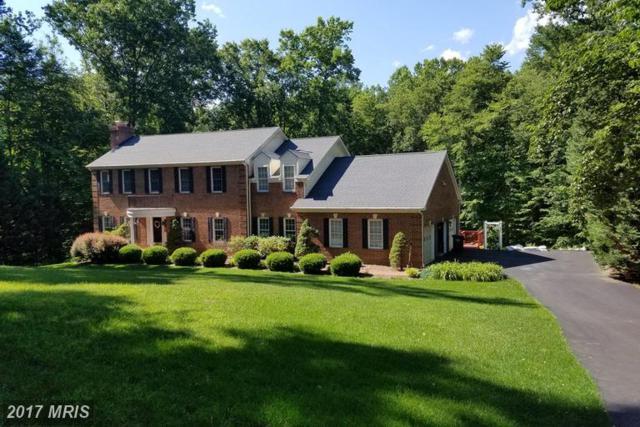 8204 Thomas Ashleigh Lane, Clifton, VA 20124 (#FX9964529) :: Browning Homes Group