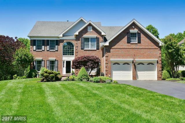 15063 Stillfield Place, Centreville, VA 20120 (#FX9967042) :: LoCoMusings