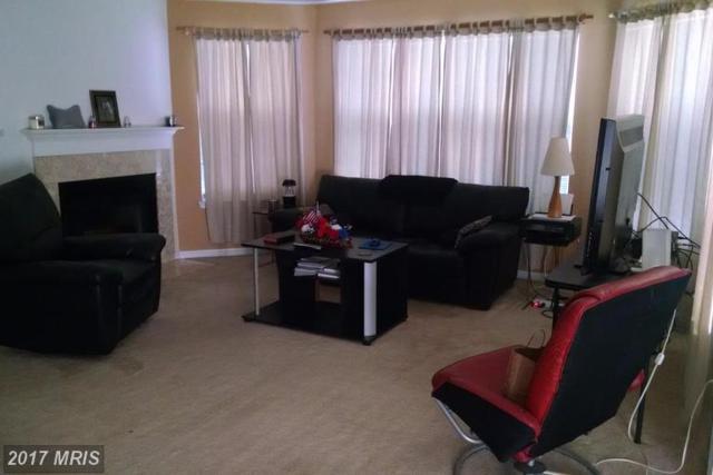 5629 Willoughby Newton Drive #12, Centreville, VA 20120 (#FX9967764) :: LoCoMusings