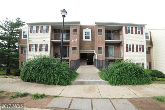 14901 Rydell Road #304, Centreville, VA 20121 (#FX9970662) :: LoCoMusings