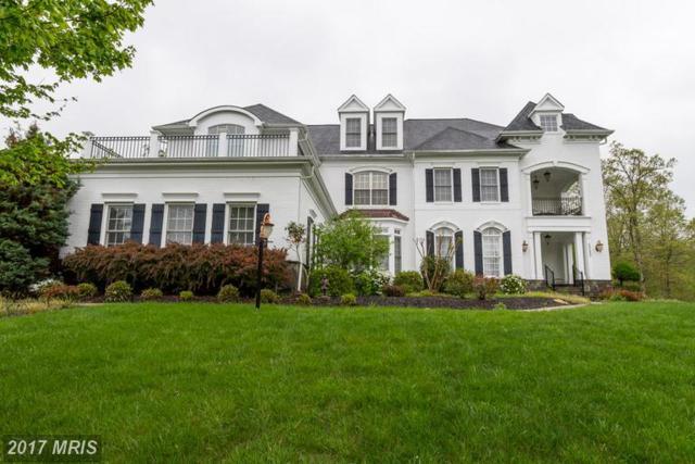 5212 Rosalie Ridge Drive, Centreville, VA 20120 (#FX9973350) :: LoCoMusings