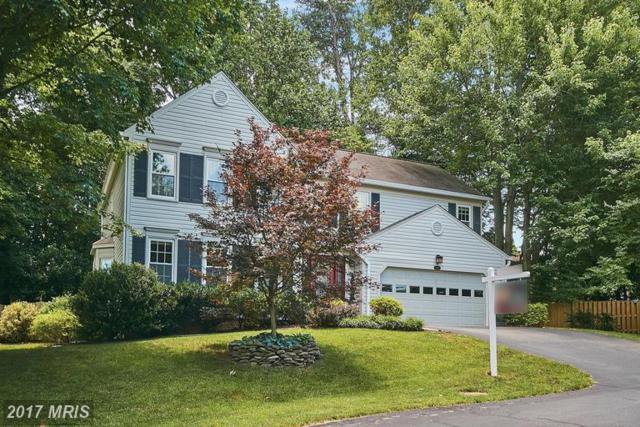 9609 Flaming Oak Way, Fairfax Station, VA 22039 (#FX9974965) :: Browning Homes Group