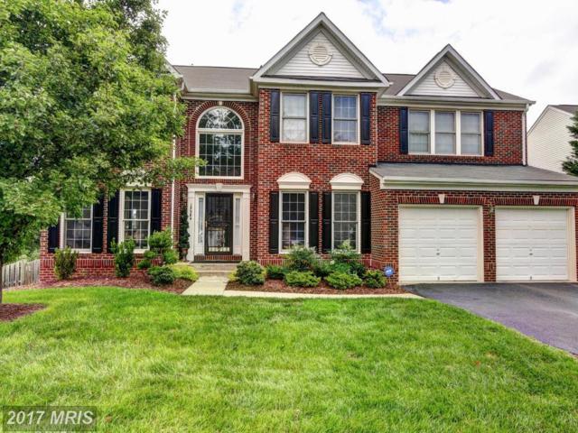13384 Caballero Way, Clifton, VA 20124 (#FX9976574) :: Browning Homes Group