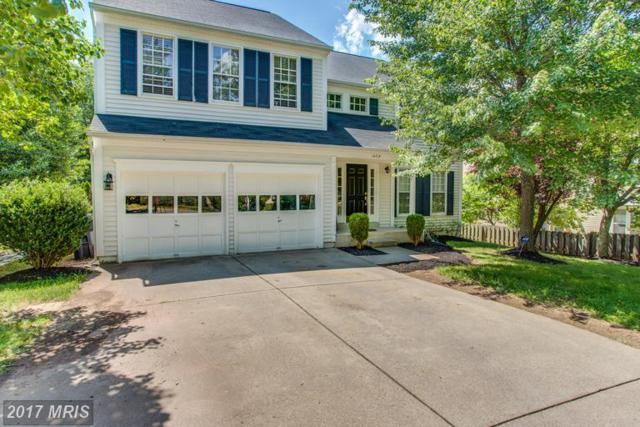 14715 Muddy Creek Court, Centreville, VA 20120 (#FX9976593) :: LoCoMusings