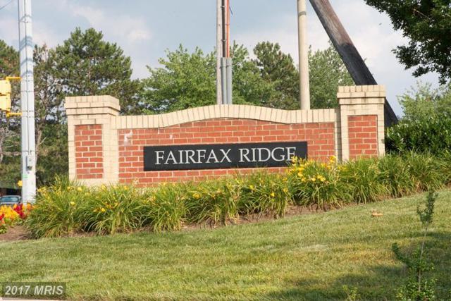 11319 Aristotle Drive #305, Fairfax, VA 22030 (#FX9978378) :: LoCoMusings