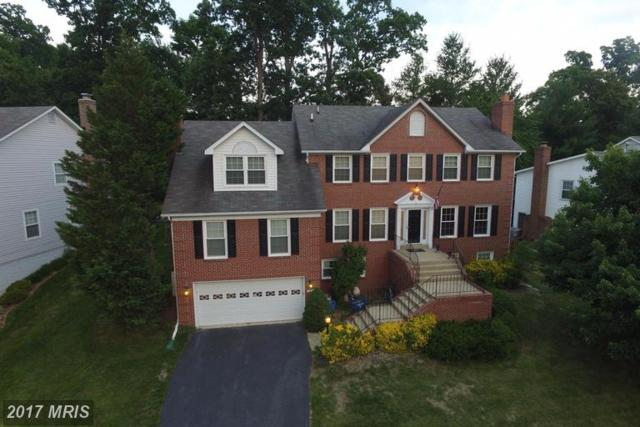 13945 Marblestone Drive, Clifton, VA 20124 (#FX9981133) :: Browning Homes Group