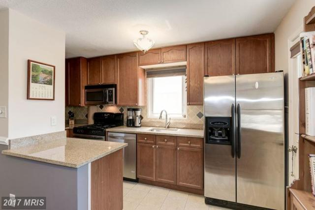2215 Sweetbriar Drive, Alexandria, VA 22307 (#FX9981779) :: Susan Scheiffley & Company Homes