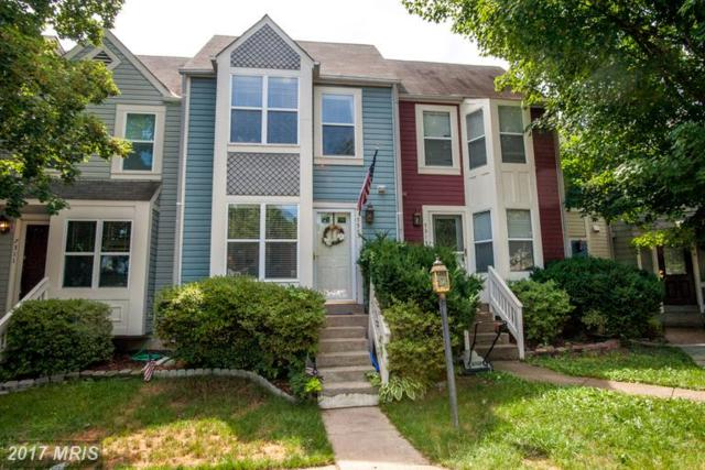 7313 Castleberg Court, Alexandria, VA 22315 (#FX9983128) :: Browning Homes Group