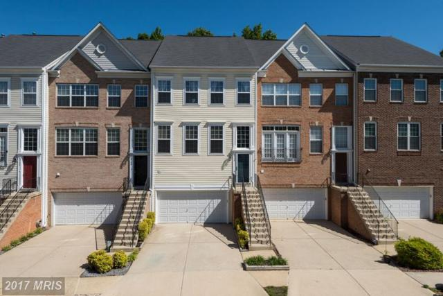 6704 Percethony Court, Alexandria, VA 22315 (#FX9983484) :: Susan Scheiffley & Company Homes