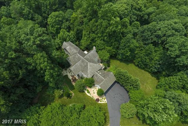 12115 Sangsters Court, Clifton, VA 20124 (#FX9983698) :: Browning Homes Group