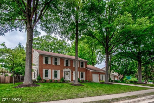 9708 Ceralene Drive, Fairfax, VA 22032 (#FX9984325) :: Browning Homes Group