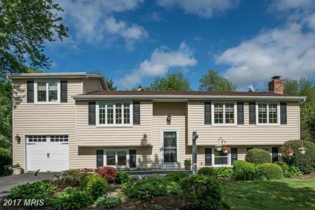901 Cantle Lane, Great Falls, VA 22066 (#FX9984976) :: Circadian Realty Group