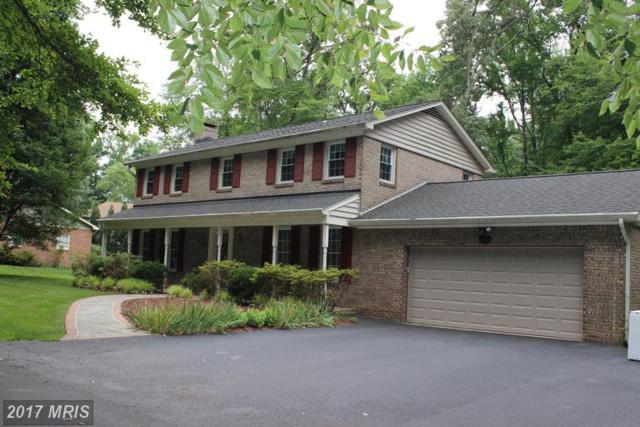 4331 Mount Vernon Memorial Highway, Alexandria, VA 22309 (#FX9985503) :: Susan Scheiffley & Company Homes