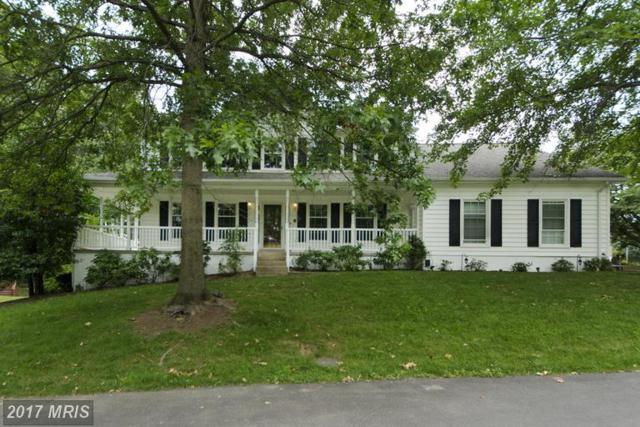 6555 Rockland Drive, Clifton, VA 20124 (#FX9985718) :: Browning Homes Group