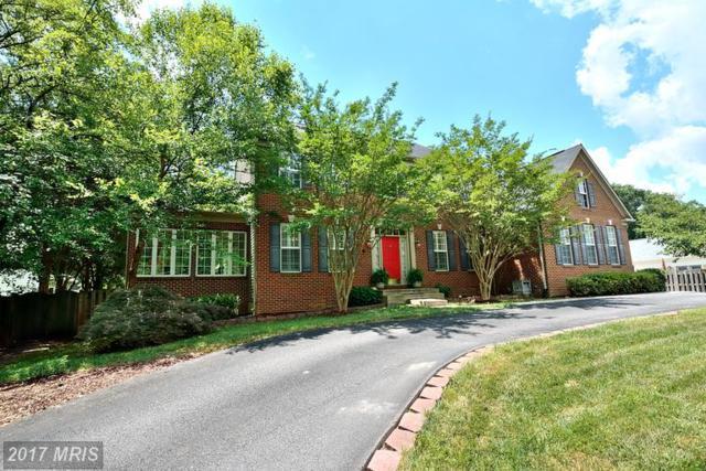 3905 Colonial Avenue, Alexandria, VA 22309 (#FX9985834) :: Susan Scheiffley & Company Homes