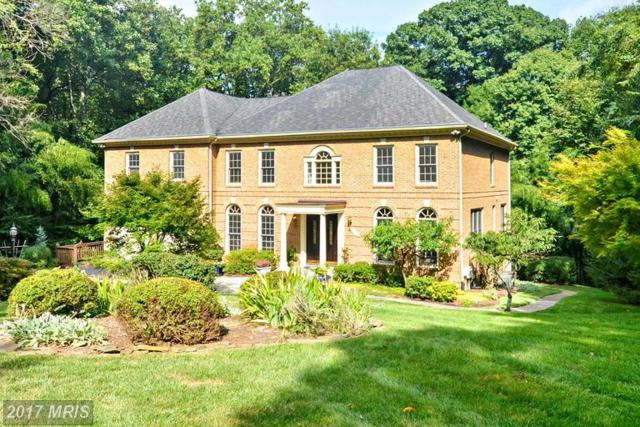 704 Live Oak Drive, Mclean, VA 22101 (#FX9986405) :: The Cruz Group