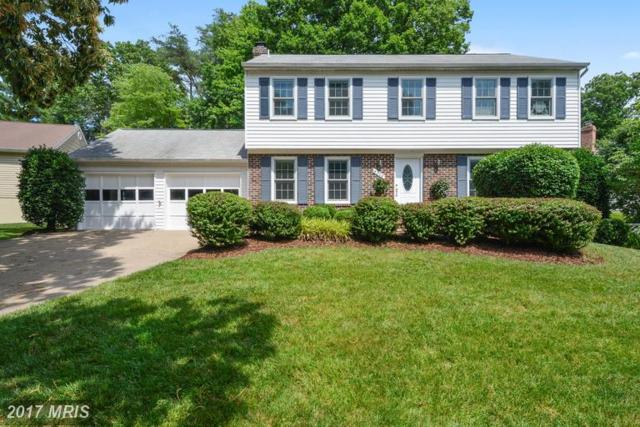 8303 Magic Leaf Road, Springfield, VA 22153 (#FX9986527) :: Susan Scheiffley & Company Homes