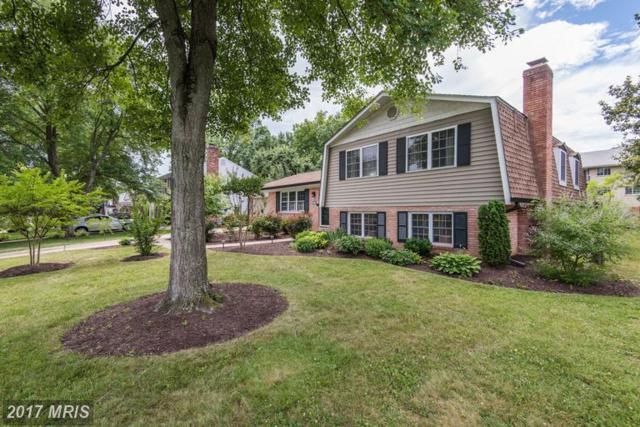 7518 Milway Drive, Alexandria, VA 22306 (#FX9986951) :: Susan Scheiffley & Company Homes