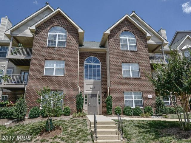 4116-G Monument Court #204, Fairfax, VA 22033 (#FX9987001) :: Circadian Realty Group
