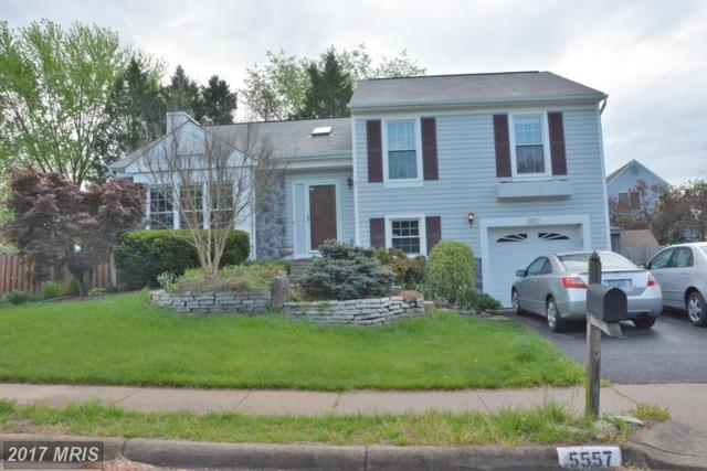 5557 Sequoia Farms Drive, Centreville, VA 20120 (#FX9987101) :: The Vashist Group