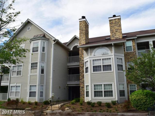 5601 Willoughby Newton Drive #27, Centreville, VA 20120 (#FX9989618) :: Pearson Smith Realty
