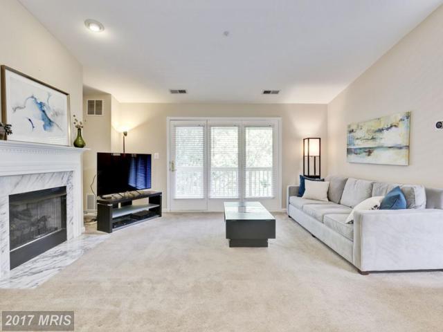 6107 Wigmore Lane M, Alexandria, VA 22315 (#FX9990438) :: Coldwell Banker Elite