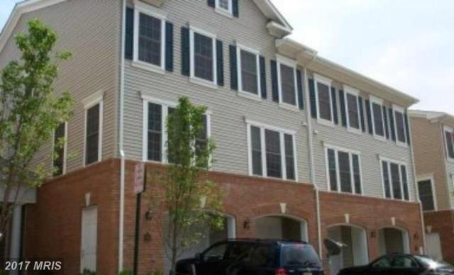 7146 Huntley Creek Place 65A, Alexandria, VA 22306 (#FX9991544) :: LoCoMusings