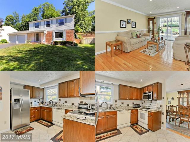 7600 Springfield Hills Drive, Springfield, VA 22153 (#FX9991682) :: Pearson Smith Realty