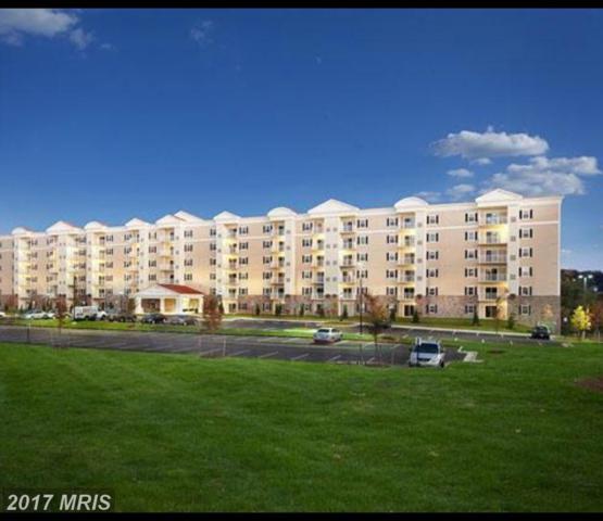 6301 Edsall Road #211, Alexandria, VA 22312 (#FX9992494) :: Pearson Smith Realty