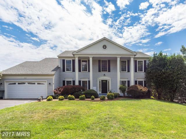 13127 Frog Hollow Court, Herndon, VA 20171 (#FX9995900) :: Pearson Smith Realty