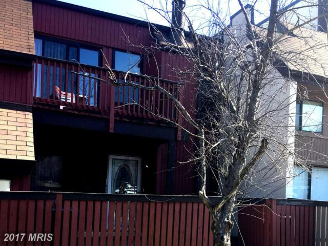 3950 Woodhue Place #16, Alexandria, VA 22309 (#FX9996275) :: Pearson Smith Realty