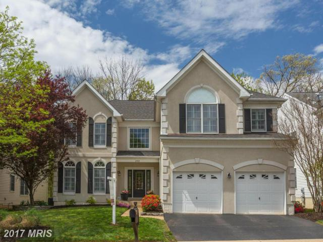 2909 Blue Holly Lane, Herndon, VA 20171 (#FX9996530) :: Pearson Smith Realty