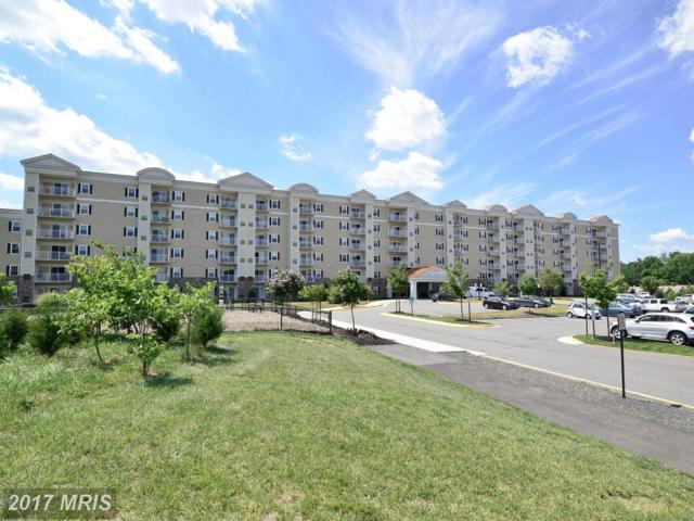 6301 Edsall Road #624, Alexandria, VA 22312 (#FX9996747) :: Pearson Smith Realty