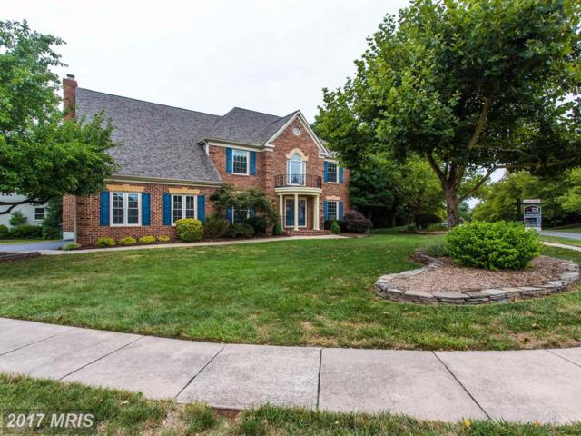 14800 Harvest Court, Centreville, VA 20120 (#FX9997041) :: Provident Real Estate
