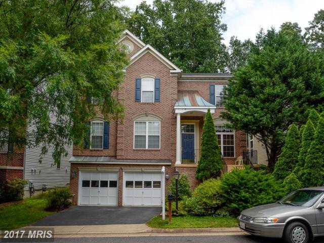 3117 White Peach Place, Fairfax, VA 22031 (#FX9998187) :: LoCoMusings