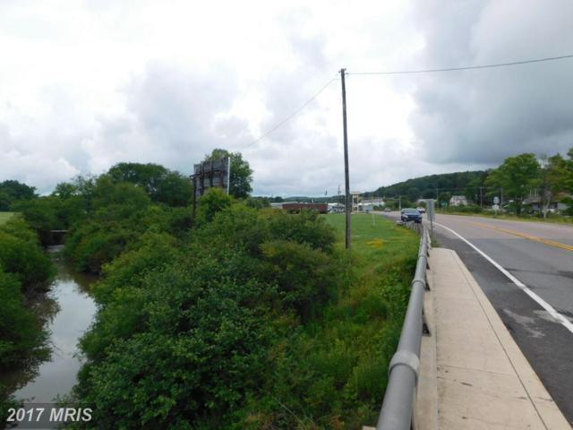 Maryland Highway, Mountain Lake Park, MD 21550 (#GA10001890) :: Pearson Smith Realty