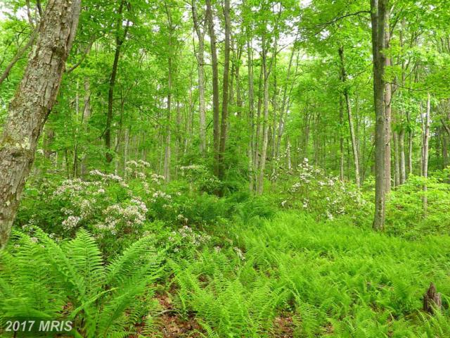 22-LOT Beaver Run Road, Oakland, MD 21550 (#GA10009573) :: Pearson Smith Realty