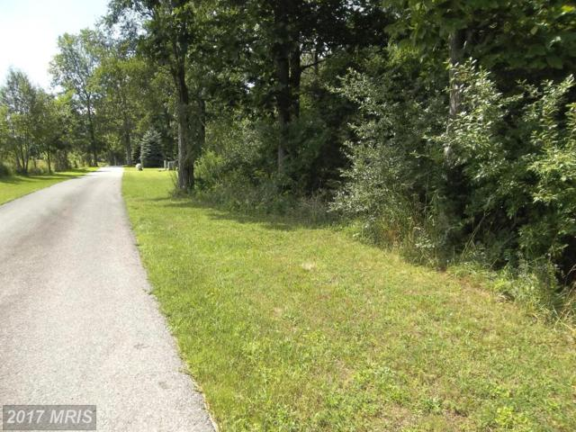 Lot 35 Sunset Ridge, McHenry, MD 21541 (#GA10026733) :: Pearson Smith Realty