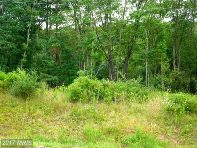 LOT Hemlock Road, Grantsville, MD 21536 (#GA10031666) :: Pearson Smith Realty