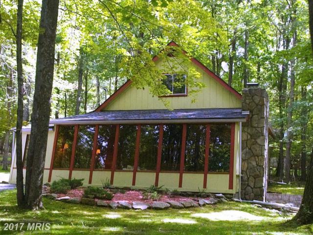 459 Woodland Way, Swanton, MD 21561 (#GA10054984) :: Wicker Homes Group