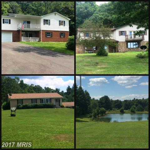 853 St John's Rock Road, Frostburg, MD 21532 (#GA10055745) :: Pearson Smith Realty
