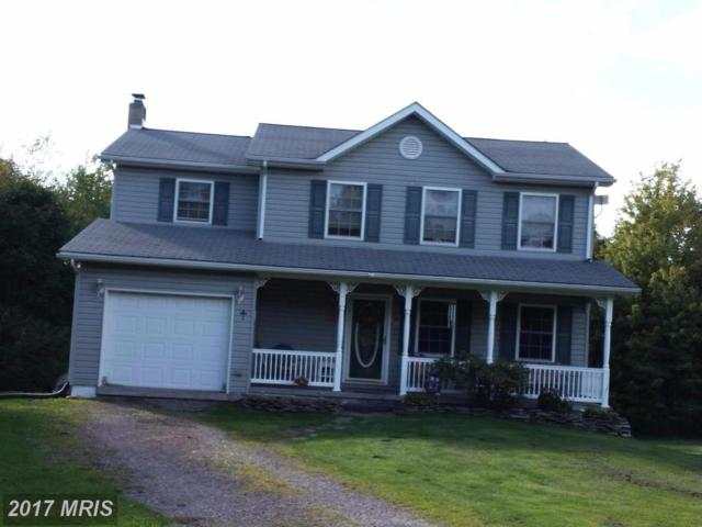 719 Westview Crossing, Grantsville, MD 21536 (#GA10057341) :: Pearson Smith Realty
