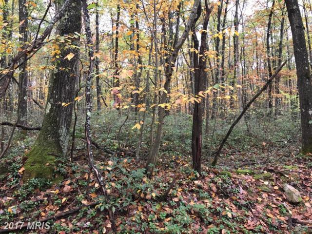 0.97 AC LTS 11 12 SECT 3 BLK, Oakland, MD 21550 (#GA10078409) :: Pearson Smith Realty