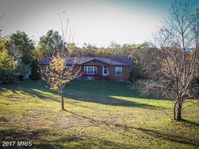 1099 Westview Crossing Lane, Grantsville, MD 21536 (#GA10084560) :: LoCoMusings