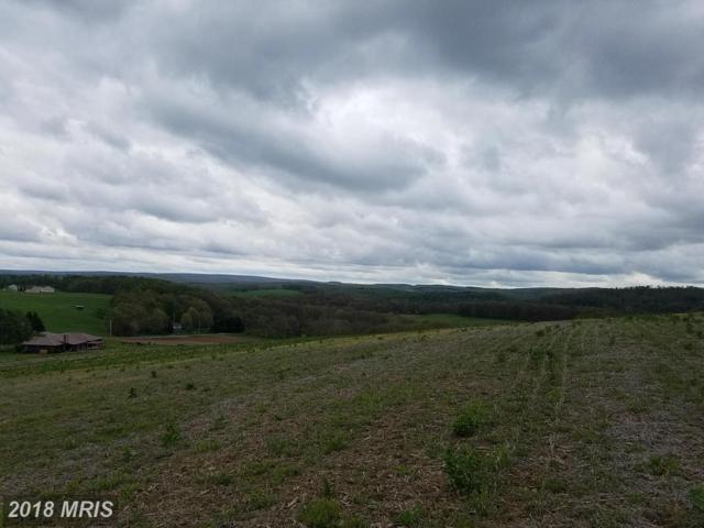 PARCEL 2 Old Morgantown Road, Friendsville, MD 21531 (#GA10139431) :: Pearson Smith Realty