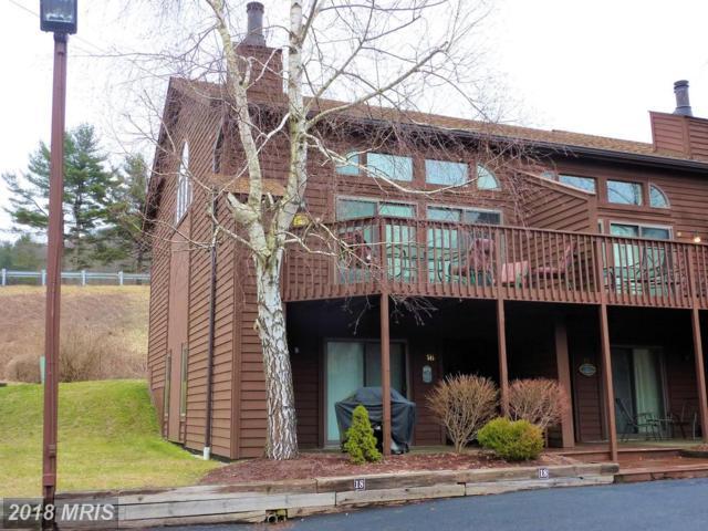 1692 Deep Creek Drive #18, McHenry, MD 21541 (#GA10156161) :: Dart Homes