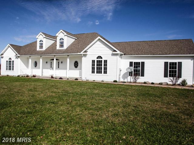 2230 Herrington Manor Road, Oakland, MD 21550 (#GA10220129) :: The Dwell Well Group