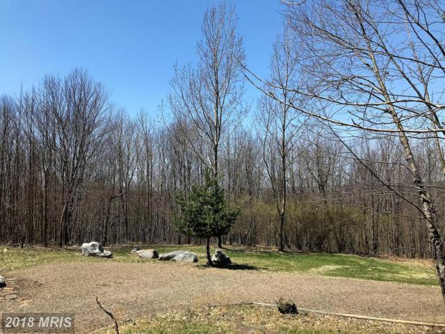 238 Windswept Lane, Grantsville, MD 21536 (#GA10232728) :: LoCoMusings